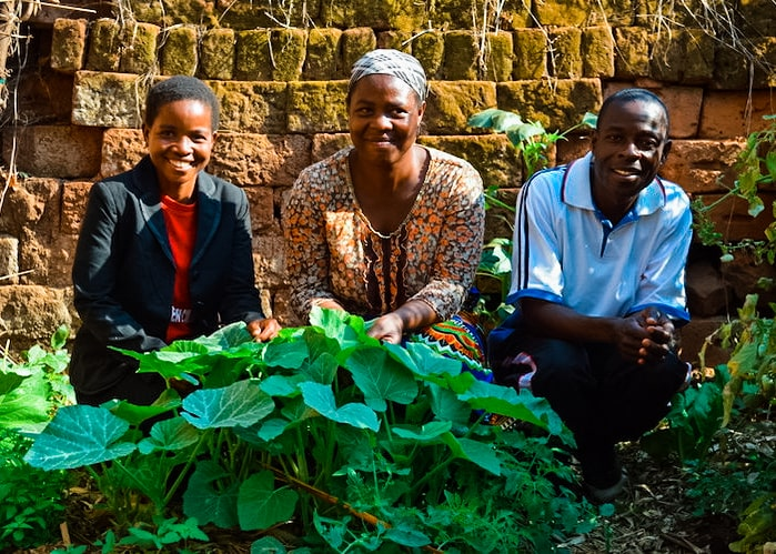 """Rosebey Benga created her first Victory Garden in March 2018 right after the training from The Face-to-Face Project and is now able to feed her mother and two grandchildren with help from her garden! She managed to earn k4,000 ($5) from selling tomatoes, and used the money to buy a piece of fabric and floor mat to sleep on.   In addition to selling vegetables, Rosebey and her family are eating vegetables from the second generation of her Victory Garden. Rosebey reported that she and her family used to sleep on the floor and would often go to bed on empty stomachs. Rosebey has said she is """"very thankful for the Victory Garden program because she is not struggling anymore."""""""