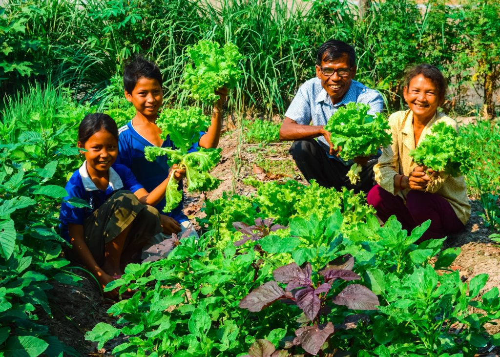 Soun came to Toul Makak village 27 years ago and is now married with 8 children and 20 grandchildren. Soun, who was interested in organic farming, created his first victory garden in October 2018 after hearing about The Face-to-Face Project's Campaign. The family has one hectare of rice field, but is only able to harvest it once a year. Before Soun created his victory garden, the family would buy about $1 worth of vegetables every day. Now, Soun and his family are saving money, eating healthier, and sharing this knowledge with their children.
